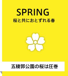 桜と共に訪れる春